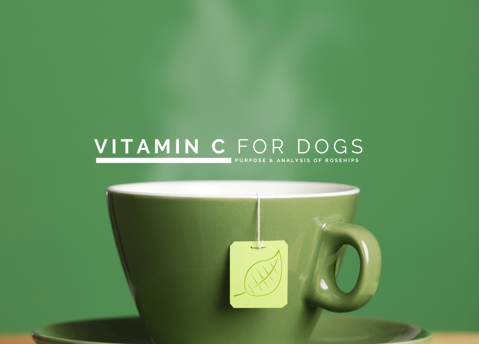 Vitamin C and Dogs